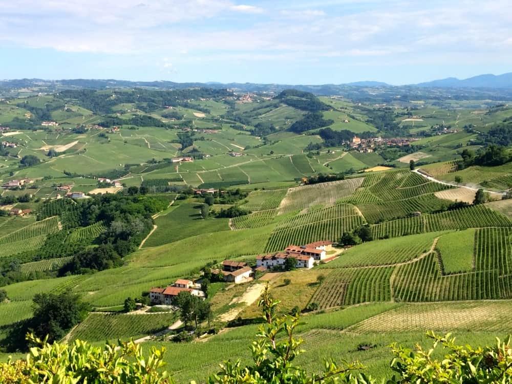 Pieonte wines le news english switzerland