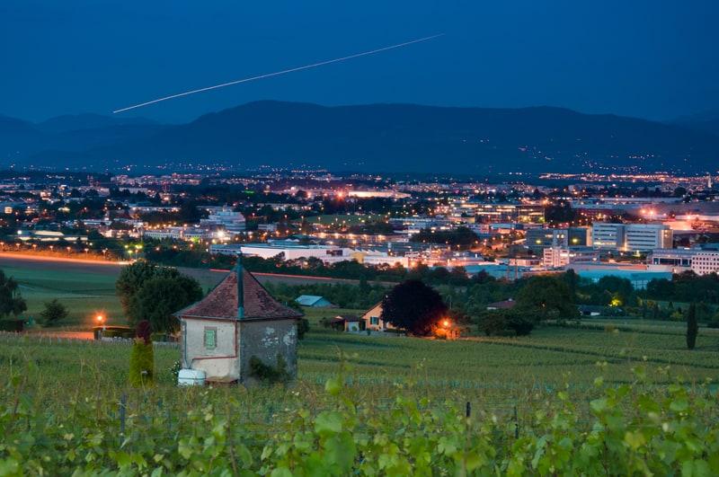 Geneva vinyards