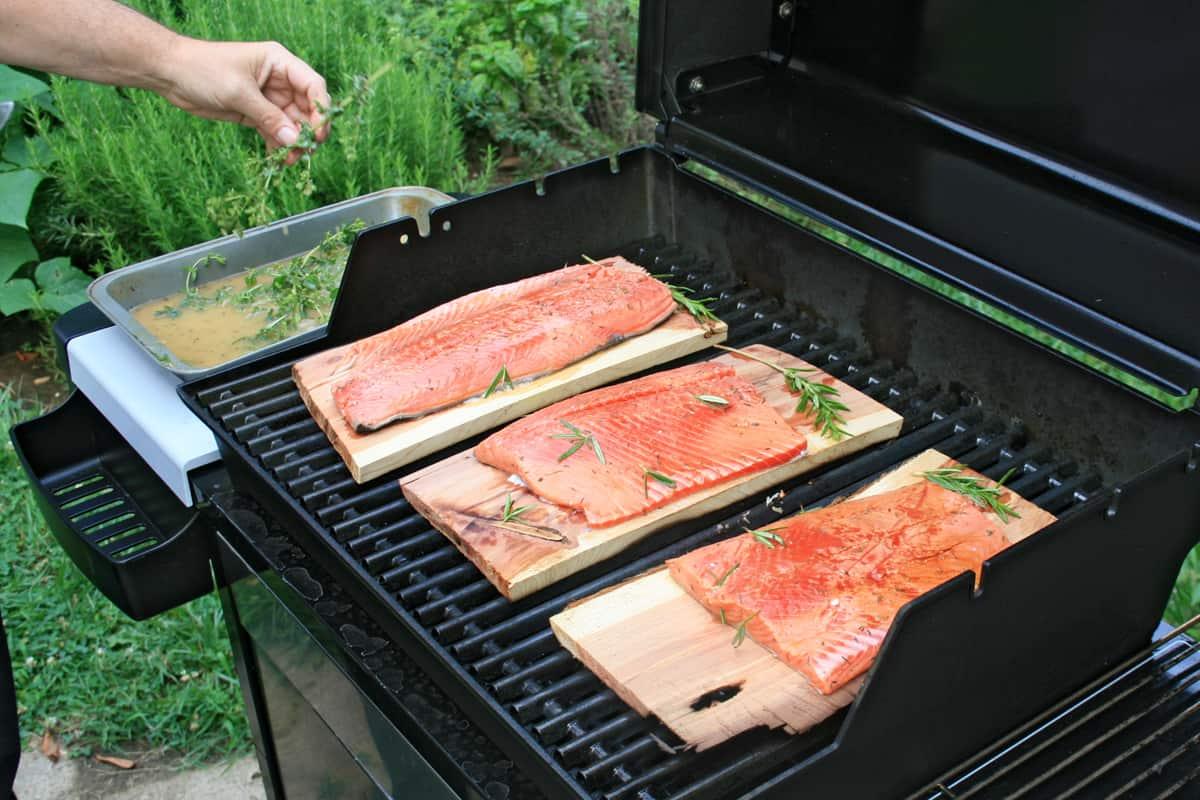Salmon BBQ on cedar