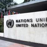 UN Geneva's open day a huge success