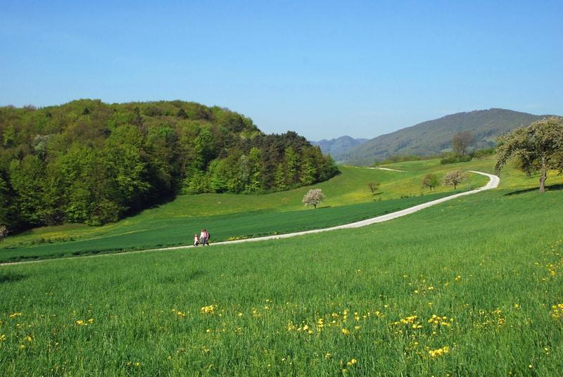 Swiss Jura_© Cerealphotos | Dreamstime.com