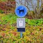 New fines for dog owners, spitters and sloppy rubbish sorters in Lausanne