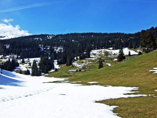 Switzerland set for warmest recorded winter