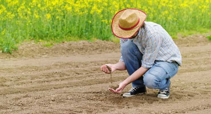 Commission alarmed by the state of Switzerland's soil