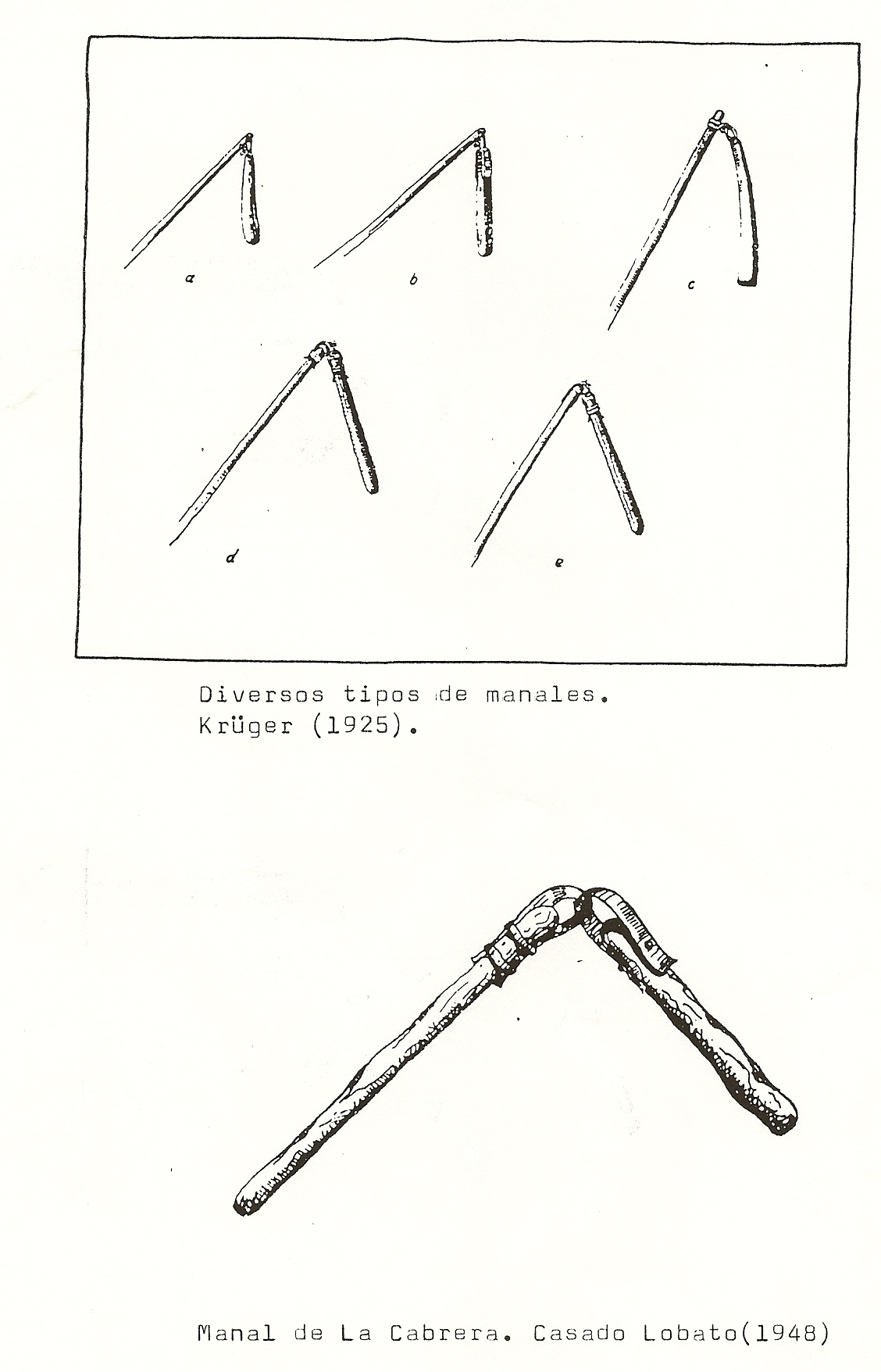 Ilustraciones Y Documentos Del Ciclo Del Pan En Sanabria
