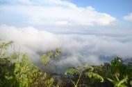 View di Sekitar Campsite