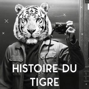 TH / HISTOIRE DU TIGRE