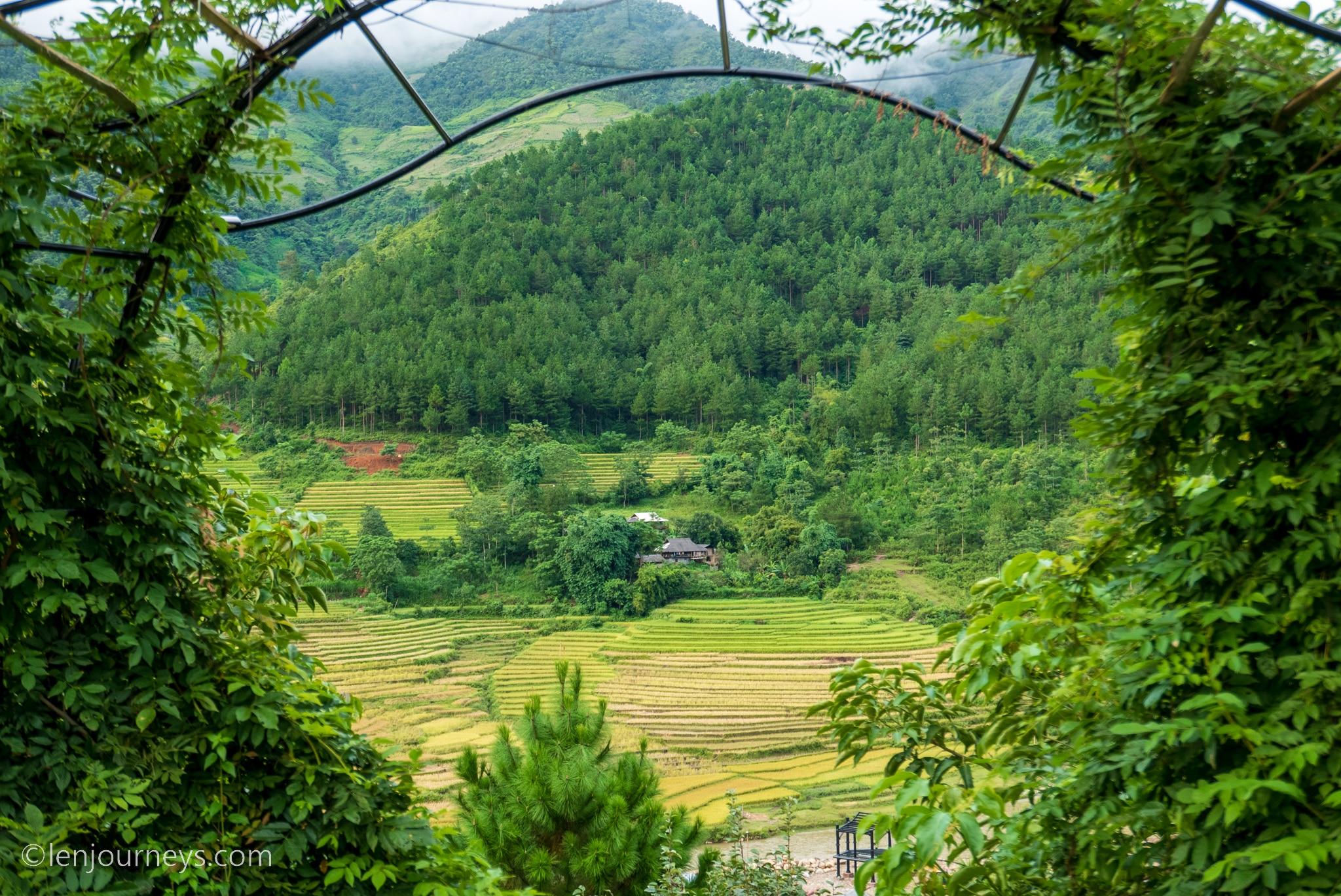 Verdant hills in Tu Le