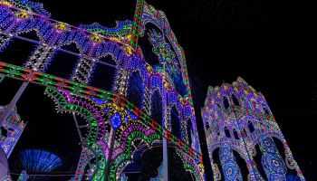 The ethereal beauty of Christmas Wonderland