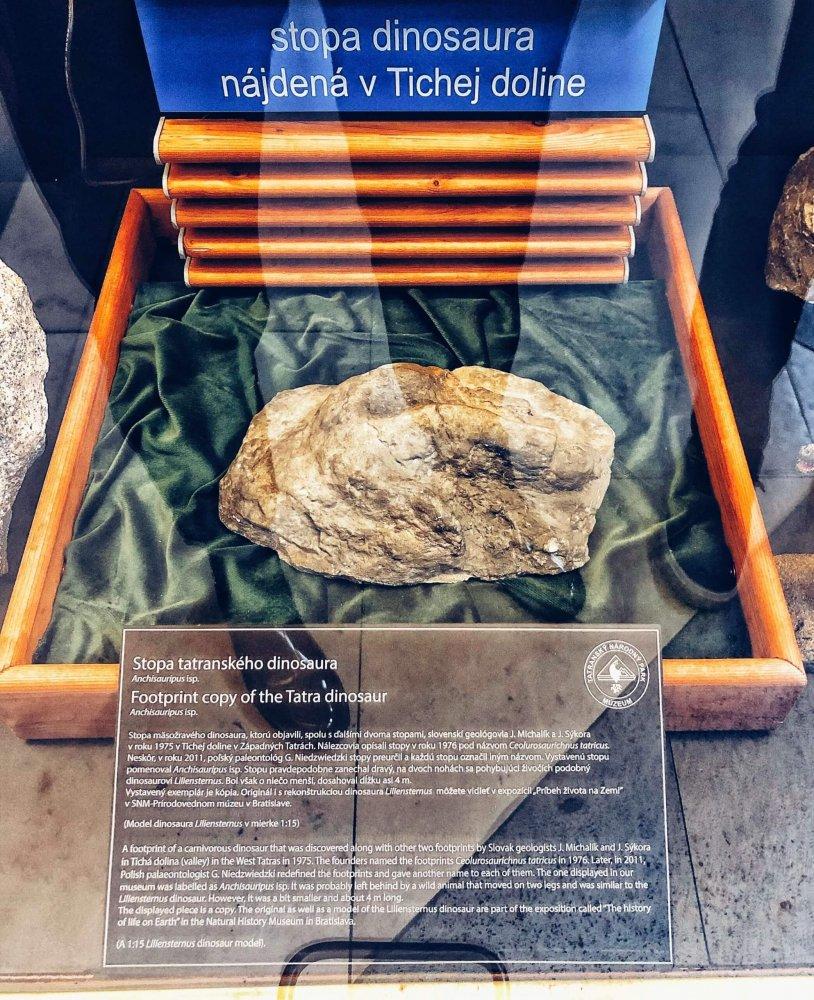 Múzeum TANAPu - dinosauria stopa, Tatranská Lomnica