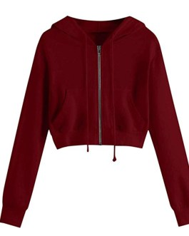 Factory Price Autumn Winter Hoodies Women Plus Size Thicken Warm Sweatshirt Solid Color Pullover Casual Female Hoodies (Copy)