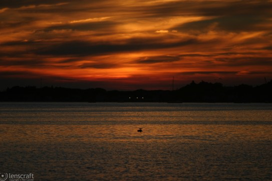 last light / provincetown, massachusetts