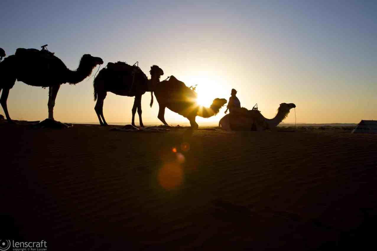 down for the night / erg chebbi, morocco