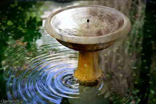 fountain / marrakech