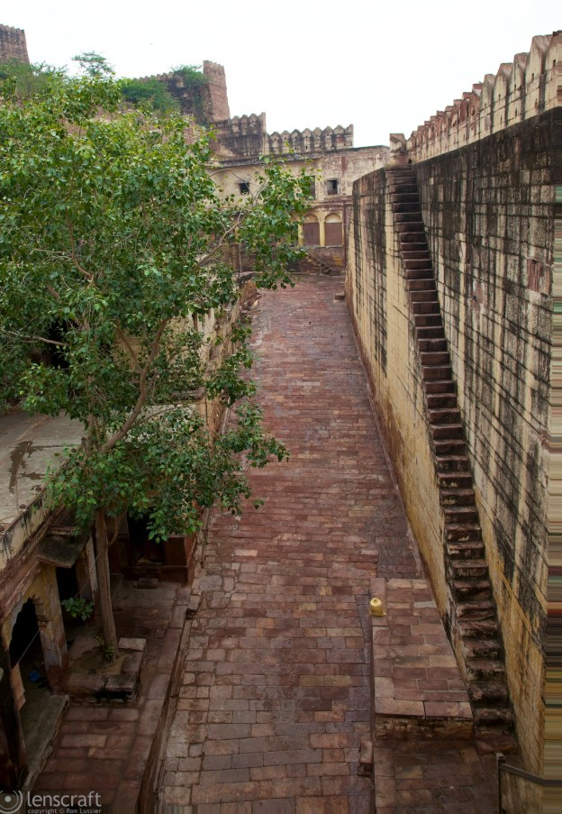 steps up to the palace walls / jodhpur, india