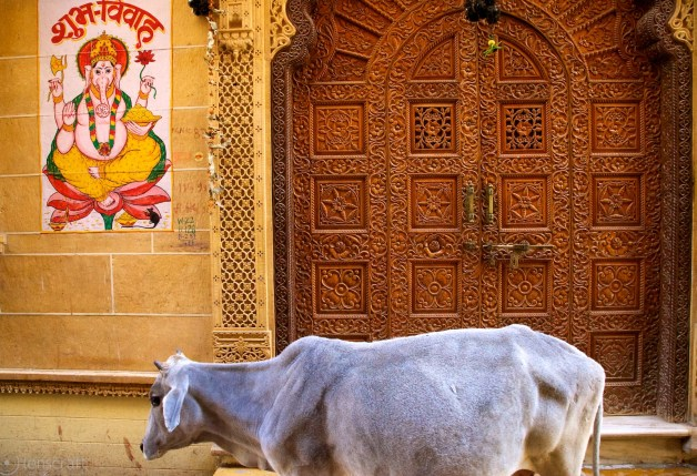 the ornate door / jaisalmer, india