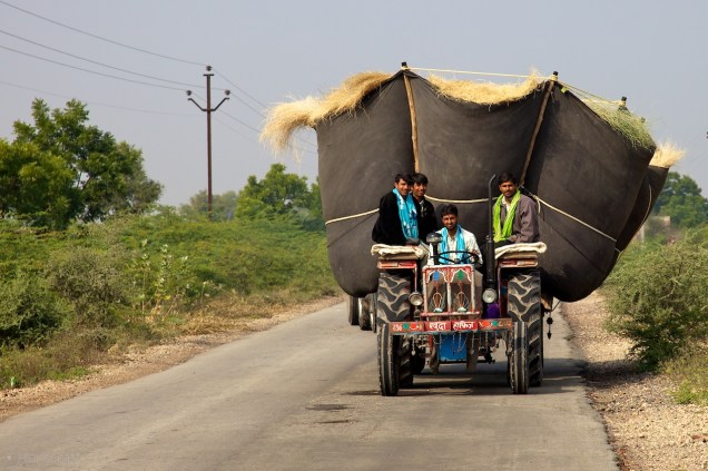 the hay gatherers / umednagar, india