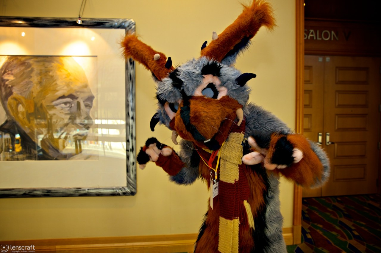 rodent / further confusion 2014