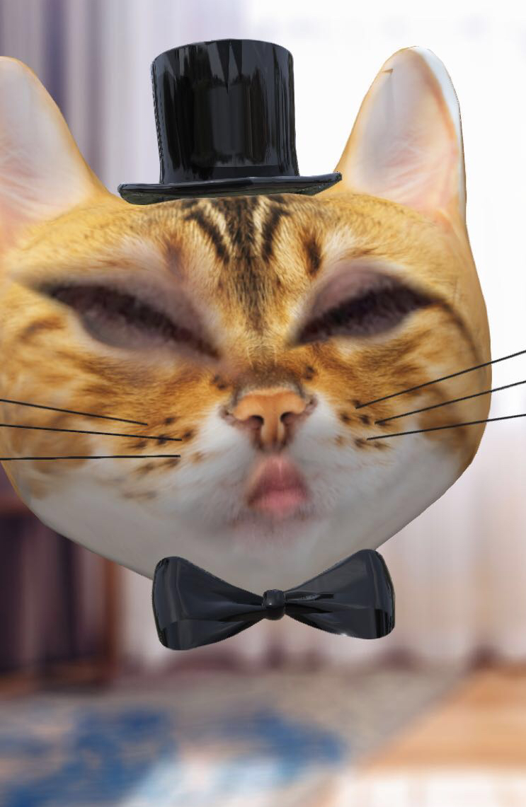 fancy cat snapchat lens