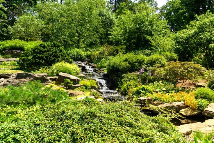 Rock Garden-1