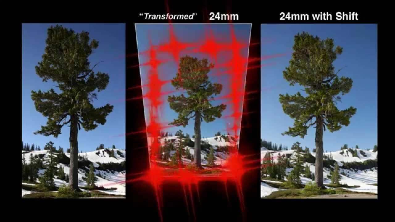 TiltShift Lenses  Explained  LensVidcomLensVidcom