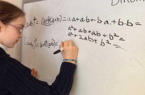 Pembelajaran Matematika di Sekolah Dasar (SD)
