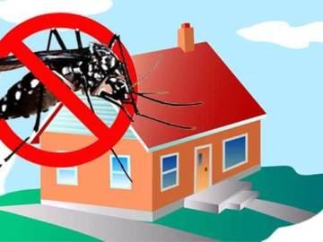 rumah bebas nyamuk