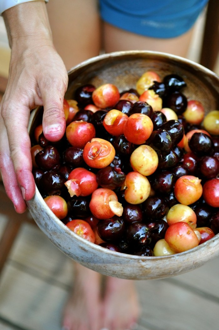 Cherries Pitted + Cherry-Stained Hands
