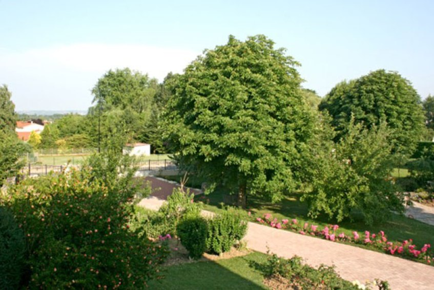 Ferienhaus : Garten
