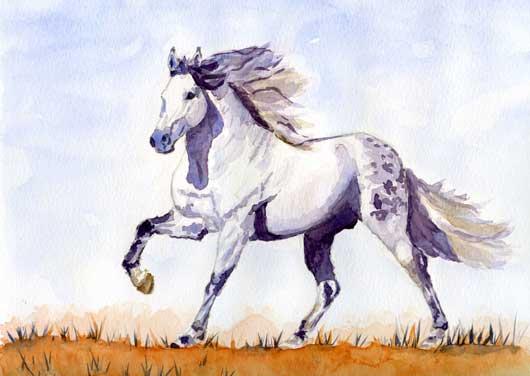 chevalweb.jpg
