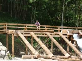 Das Holz ist am Ziel
