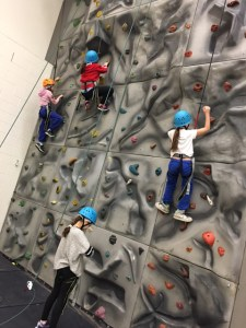 Rock climbing wall in the Gym
