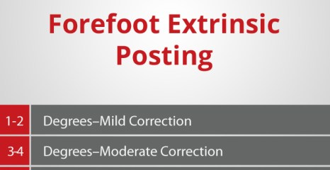 Forefoot Extrinsic