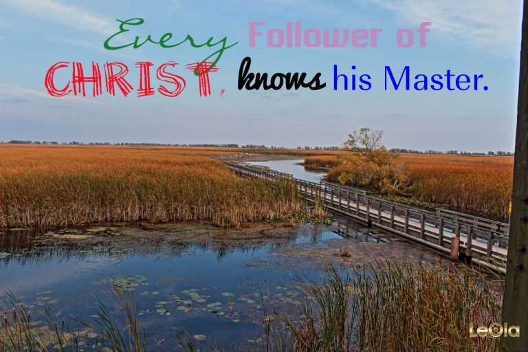 IMG_-1035 Point Pelee Marsh