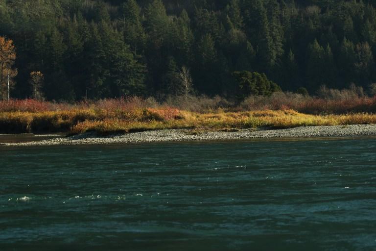 IMG_1222 Fraser River