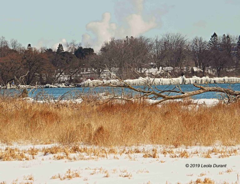 Winter Landscape copy.jpg