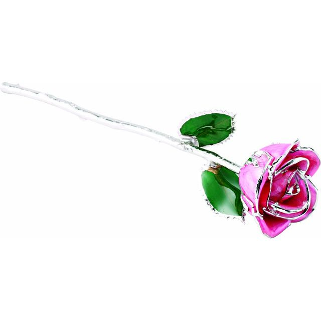 Lacquered Pink Rose With Platinum Trim from Leonard & Hazel™