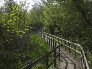 Tappa 7. Sentiero natura parco di Nazzano. Tevere-Farfa