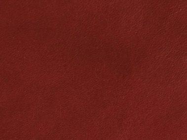 Raspberry Lambskin Lining