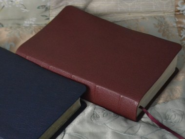 Crimson River Grain Goatskin Bible