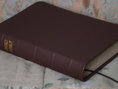 Brown Pebble Grain Cowhide Bible