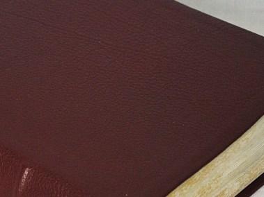 Burgundy Scapegoat Bible Close-Up