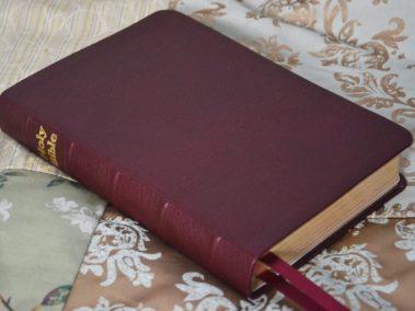 Burgundy Scapegoat Bible