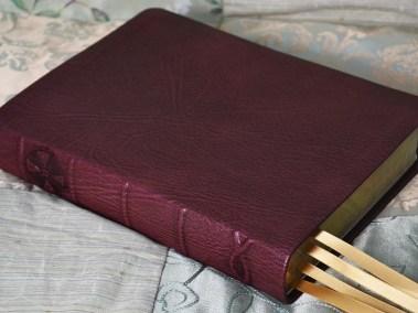 Crimson Sokoto Goatskin Bible