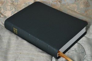 Bible rebound in forest pebble grain cowhide