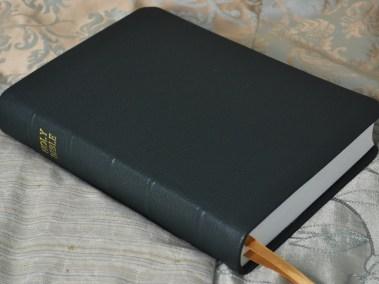 Forest Pebble Grain Cowhide Bible