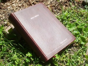 "Dark Brown hand-dyed kangaroo ""Outback Style"" Bible"