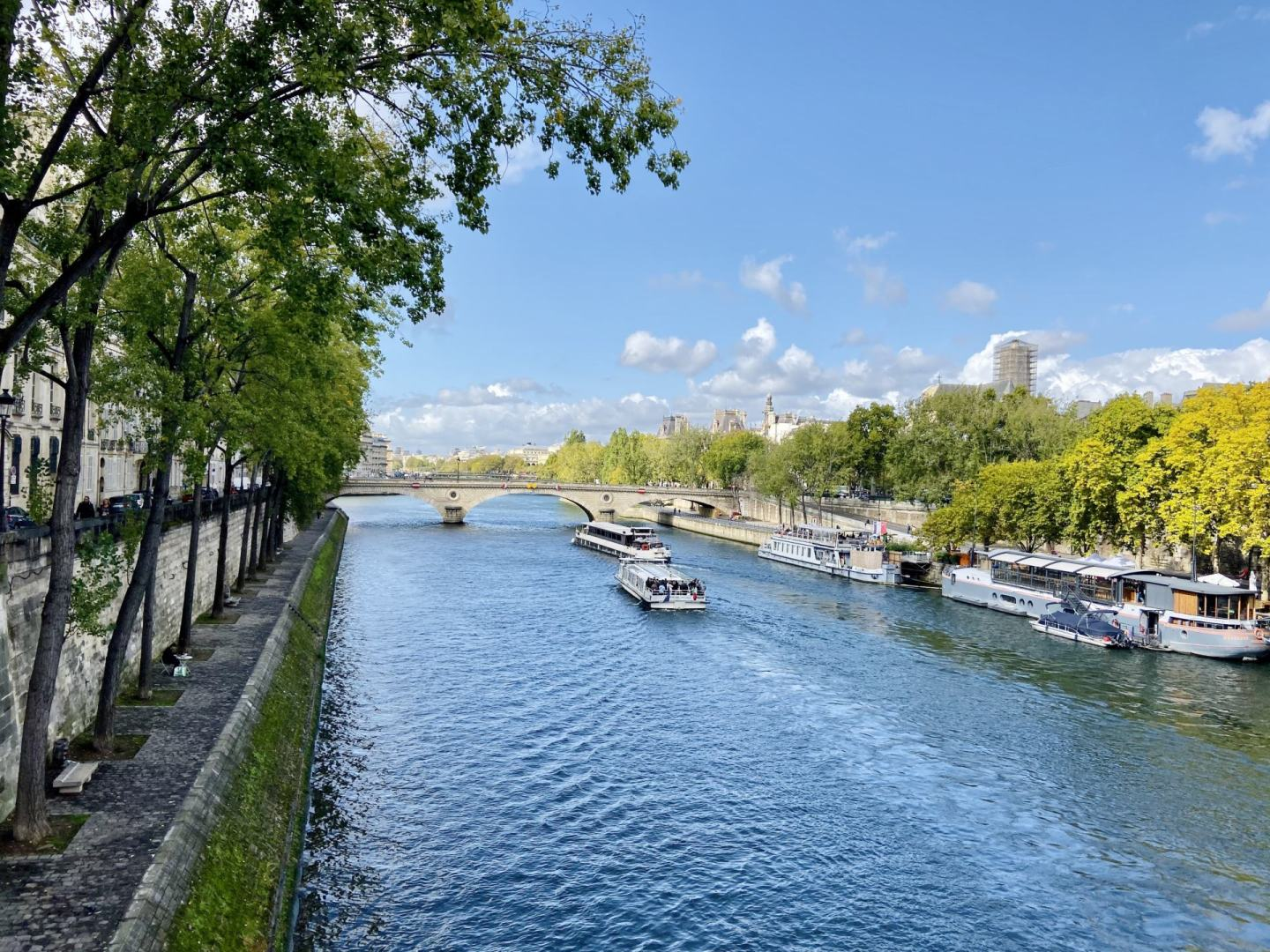 View of Paris from the Pont Marie