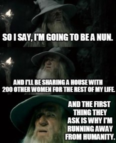 Confused-Gandalf-1_MMeme28_NOV15