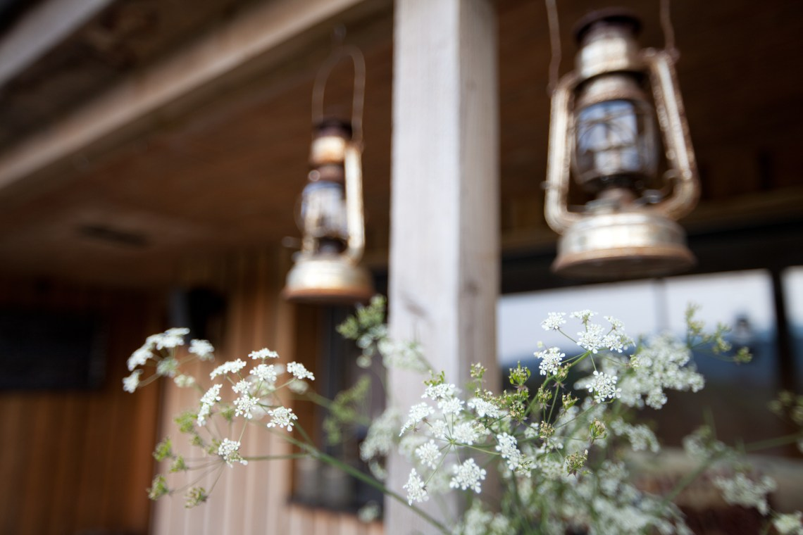 Storm lanterns and fennel flowers at Fforest Camp. By Leonie Wise